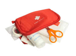 Polling Station First Aid Kit