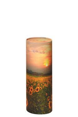 Medium Scattering Tube - Sun Flower