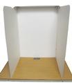 Cardboard Table-Top Voting Screen